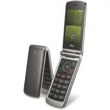 LG G360 (титан)